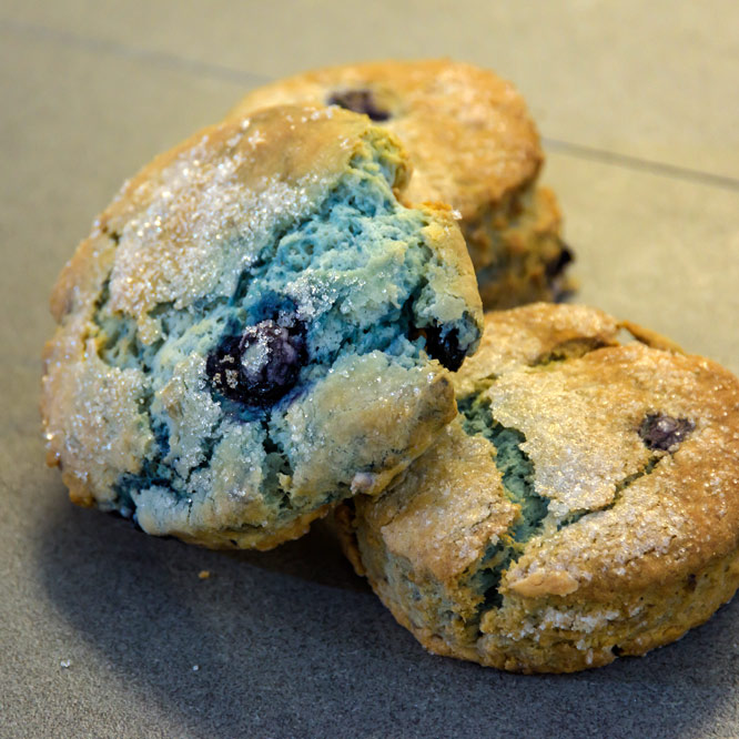 Blueberry Scone (4pk)
